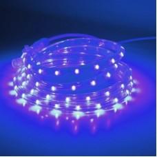 Дюралайт светодиодный двухжильный LED-CDL-FCB-3528-13MM-36L-240V-B синий, 13мм, кратность резки 2м