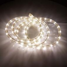 Дюралайт светодиодный двухжильный LED-DL-2W-100M-1M-240V-WW белый теплый, 13мм, кратность резки 1 м